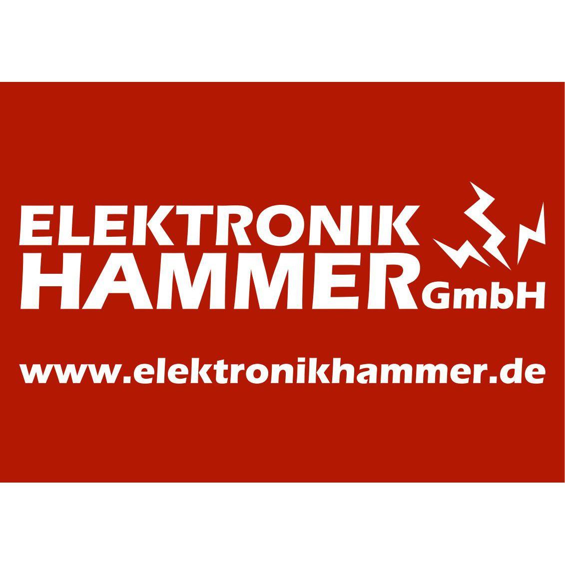 Bild zu Elektronik Hammer GmbH in Grimma
