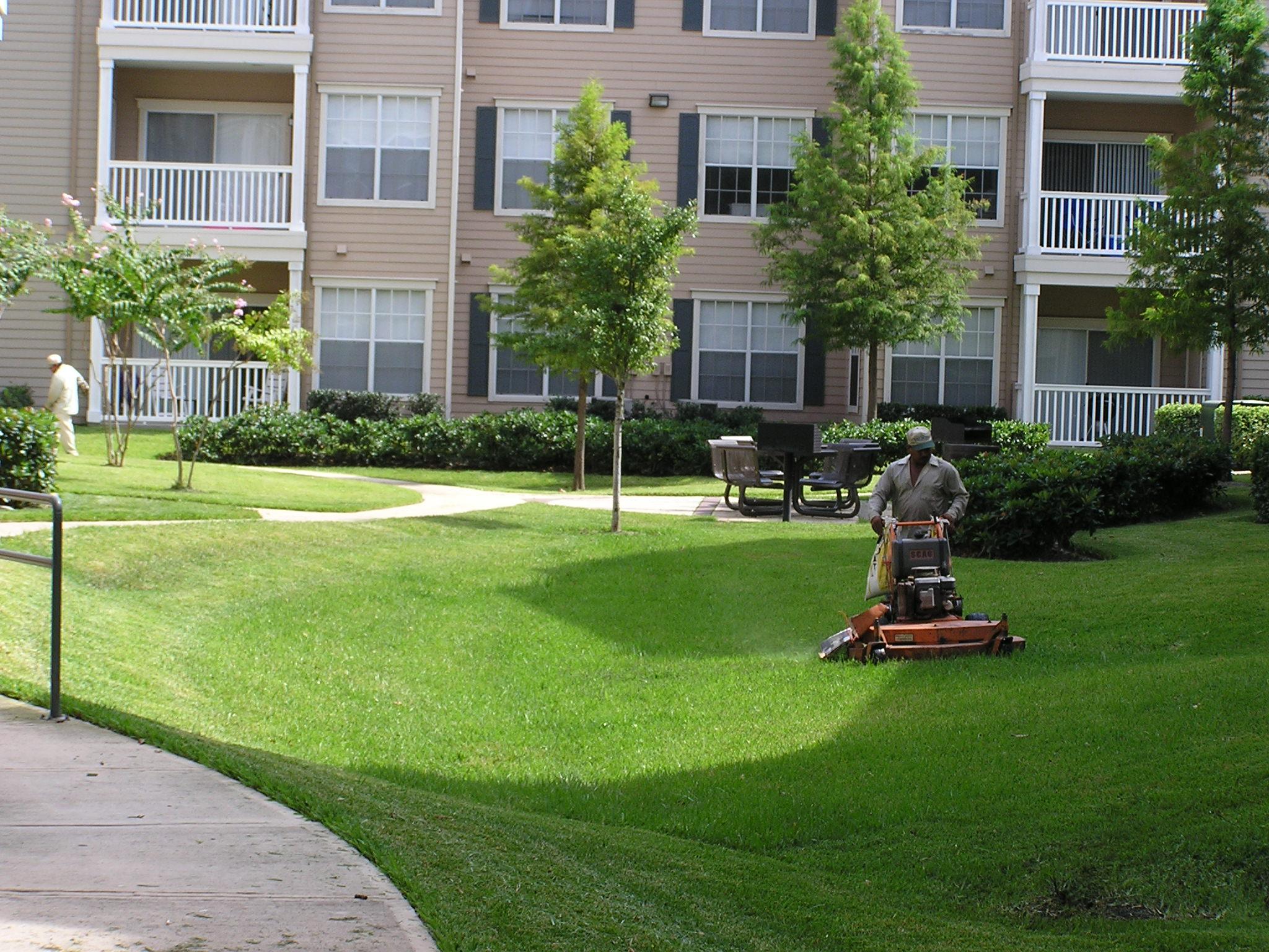 V s landscape maintenance in loxahatchee fl 33470 for Landscape maintenance