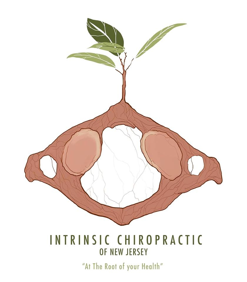 Intrinsic Chiropractic of New Jersey