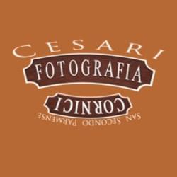 Laboratorio di Fotografia Marco Cesari