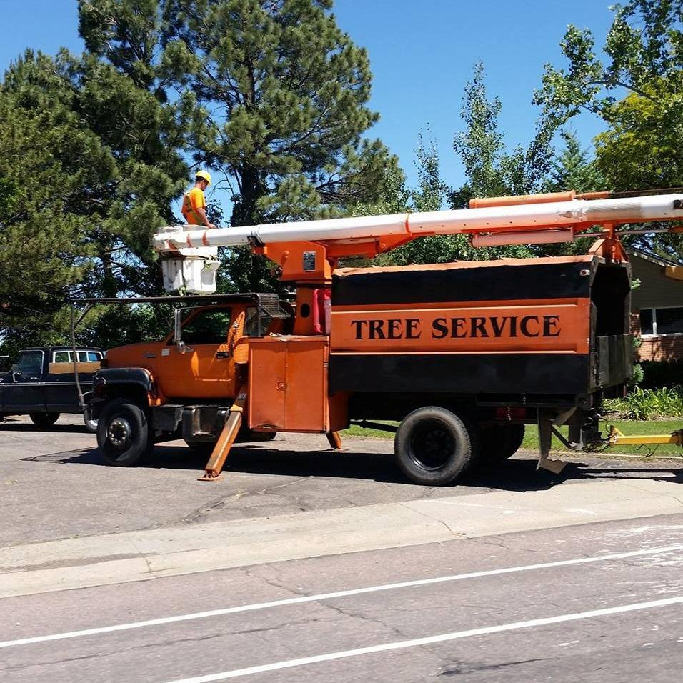 A Better Tree Service
