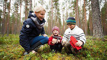 Suomen metsäkeskus, Finlands skogscentral