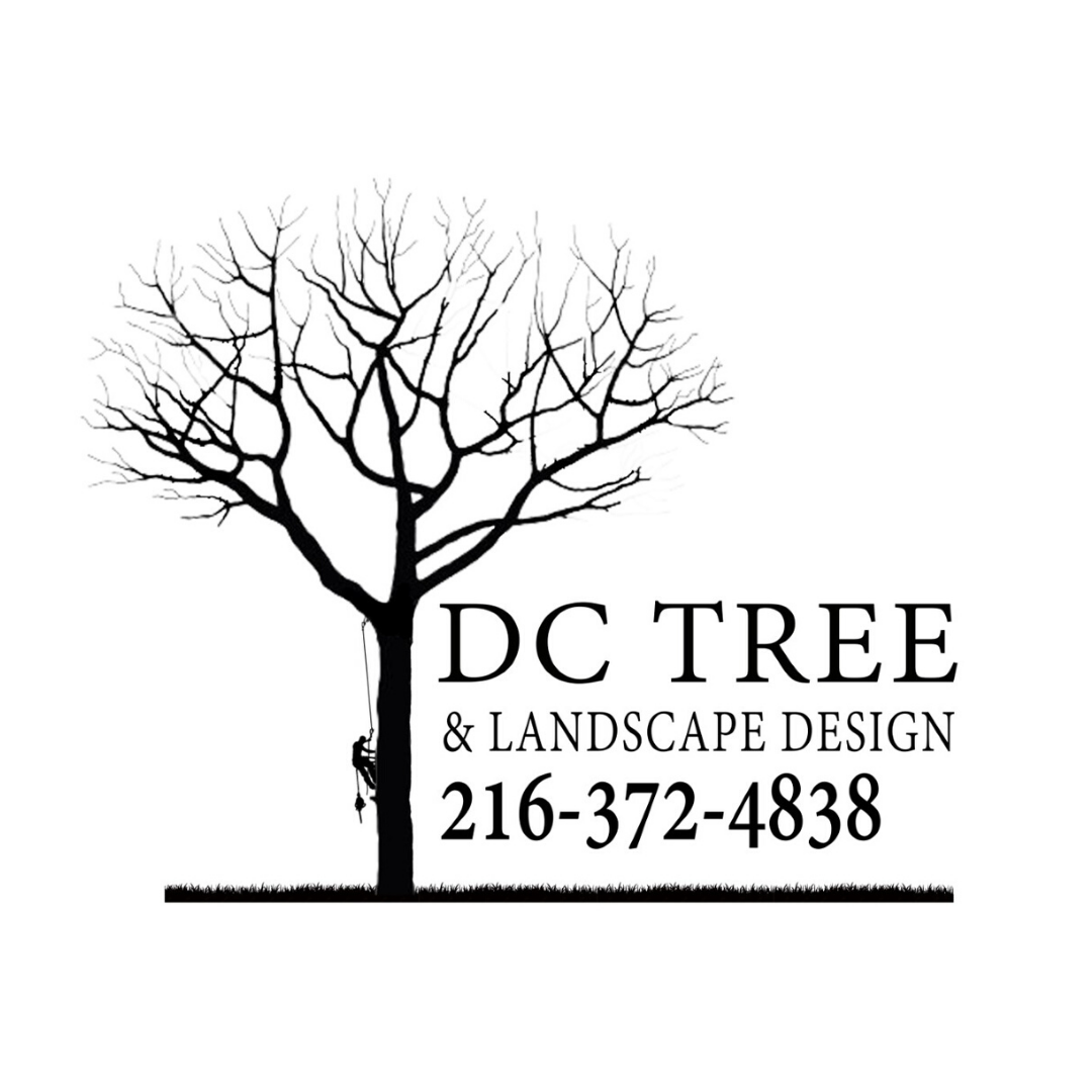 DC Tree & Landscape Design