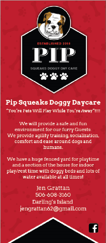 Pip Squeaks Doggy Daycare
