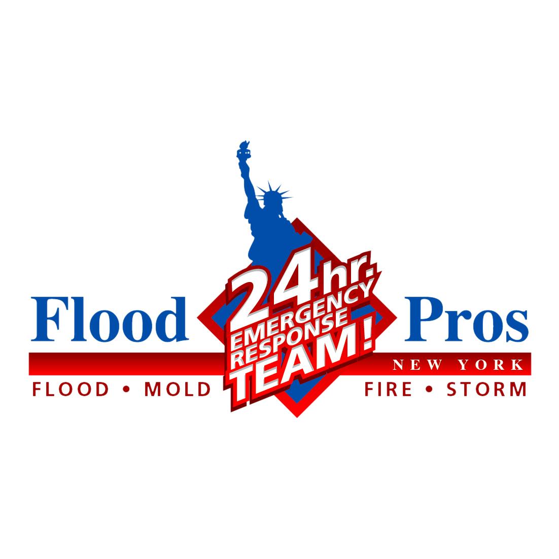 Flood Pros of NY