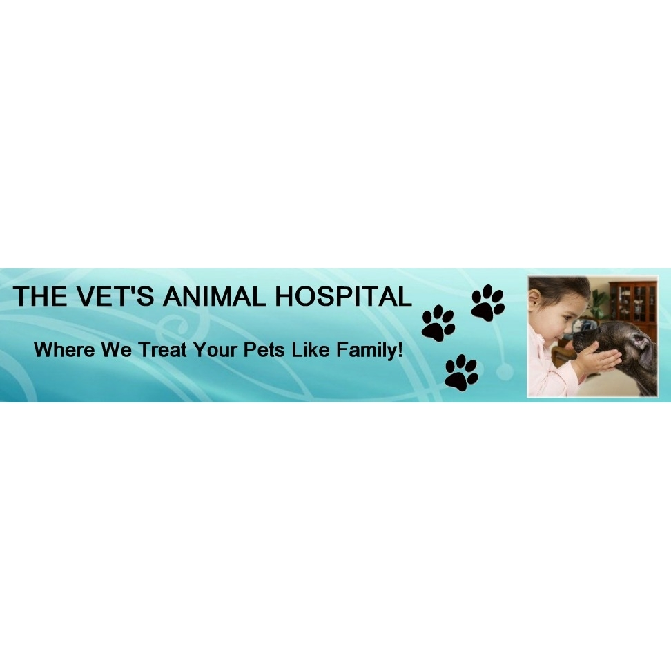 The Vets Animal Hospital