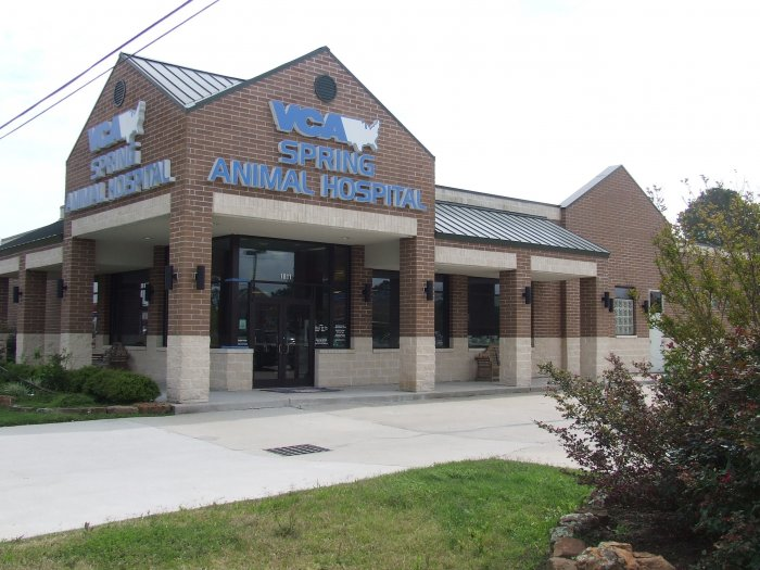 VCA Spring Animal Hospital Coupons near me in Spring ...