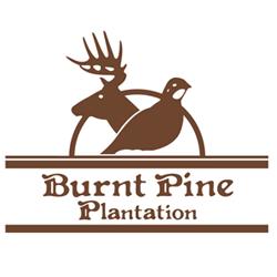 Burnt Pine Plantation
