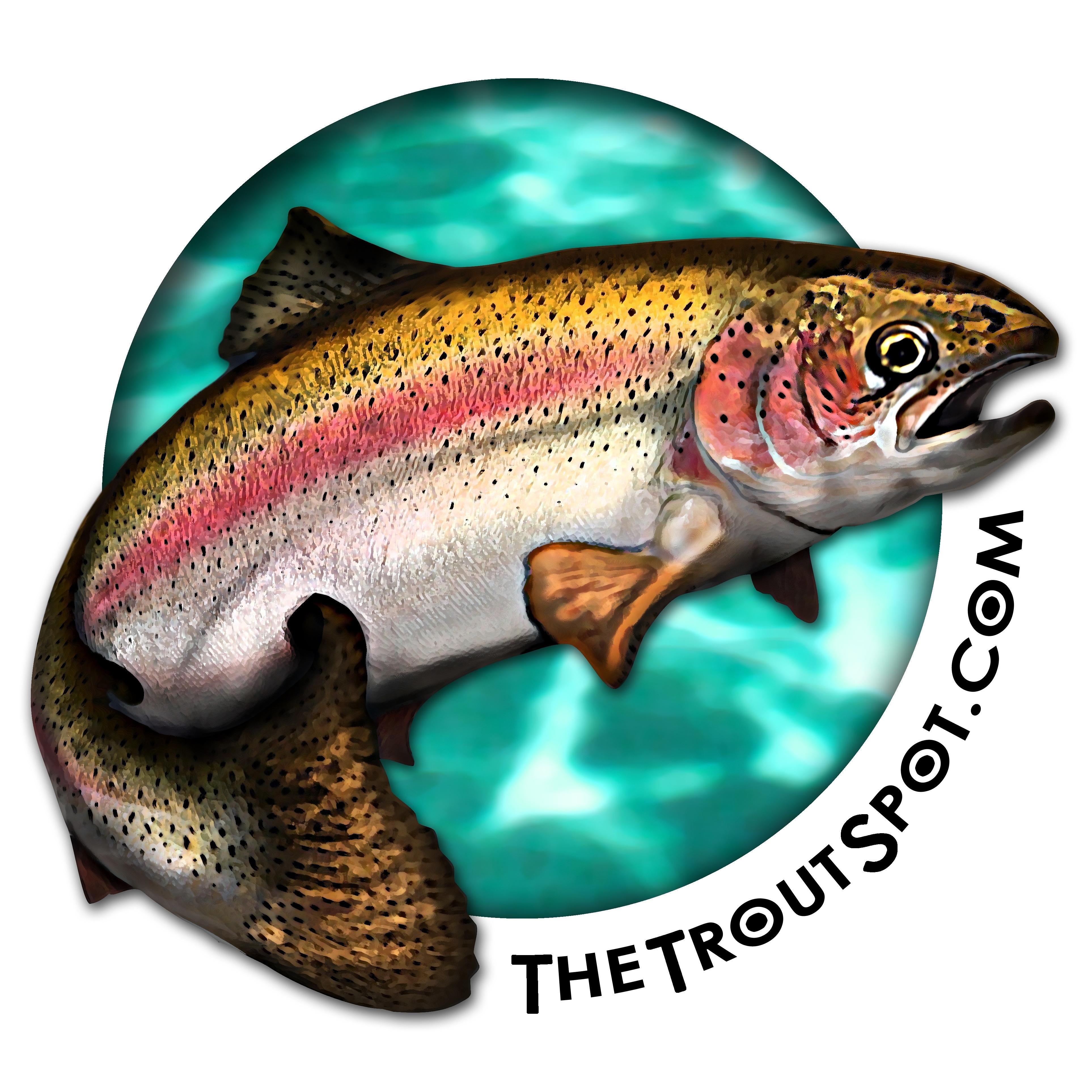 The Trout Spot