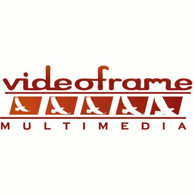 Videoframe Multimedia
