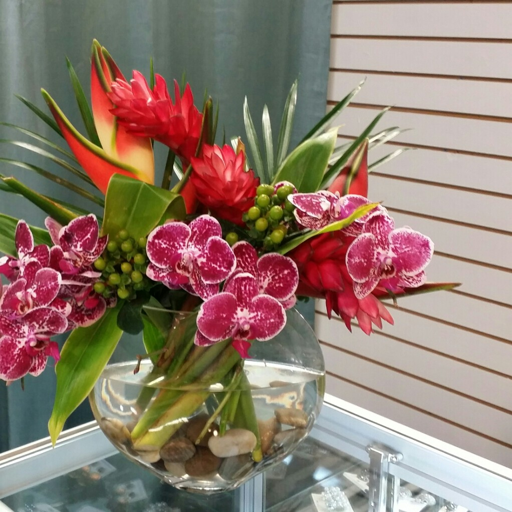 Ideal Orchids
