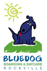 Blue Dog Boarding and Daycare image 0