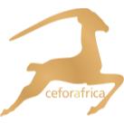 Bild zu Ceforafrica Haarverlängerungen Köln in Köln