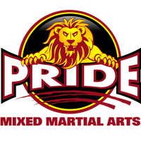 Pride Mixed Martial Arts