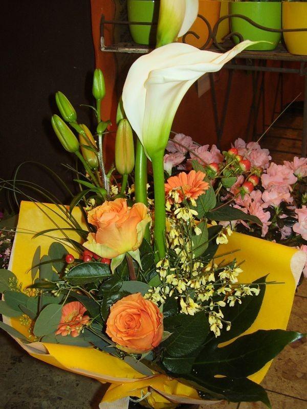 Blumen Andre Stadler