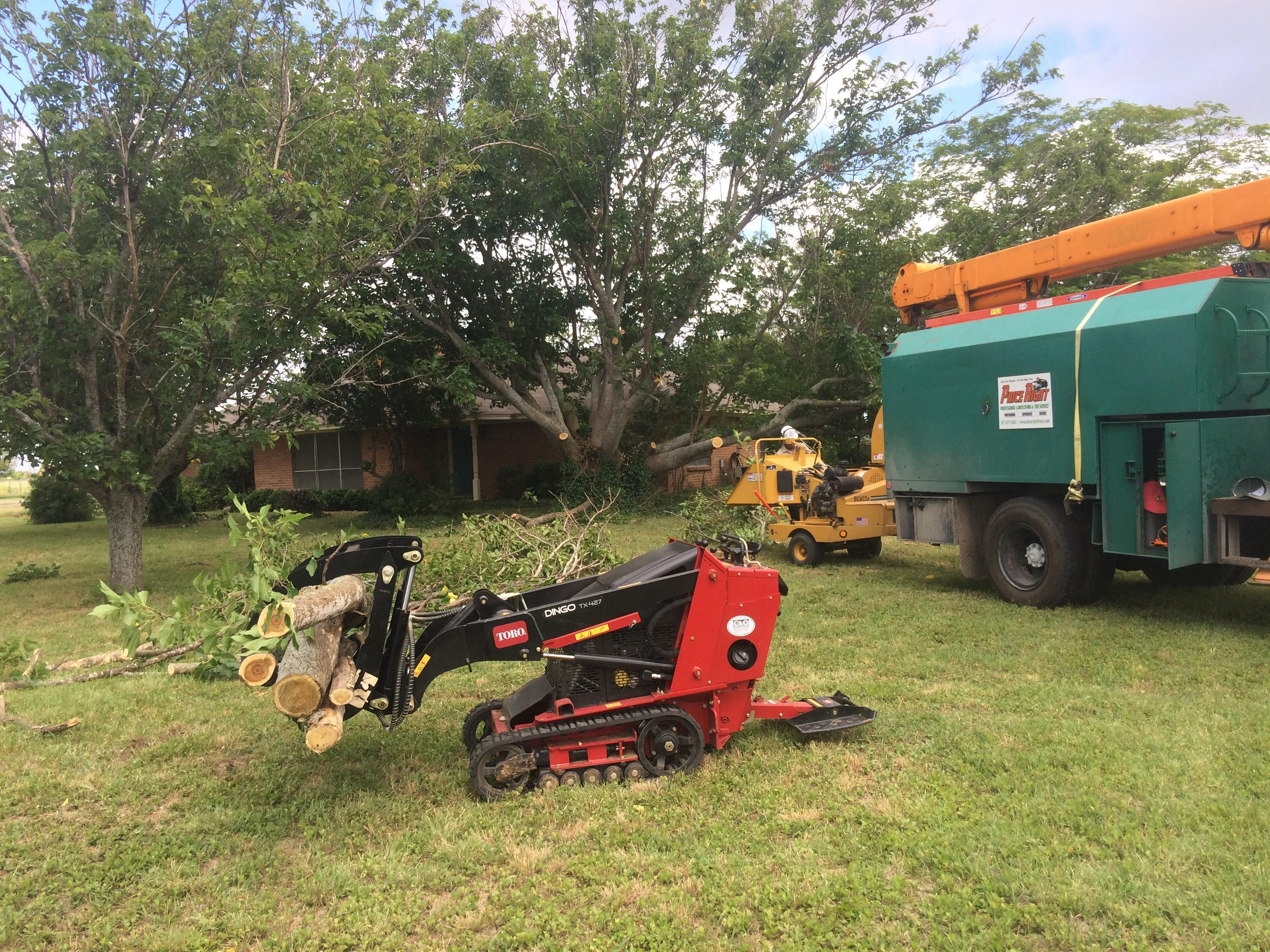 Price right professional landscaping tree service in for Professional landscaping service