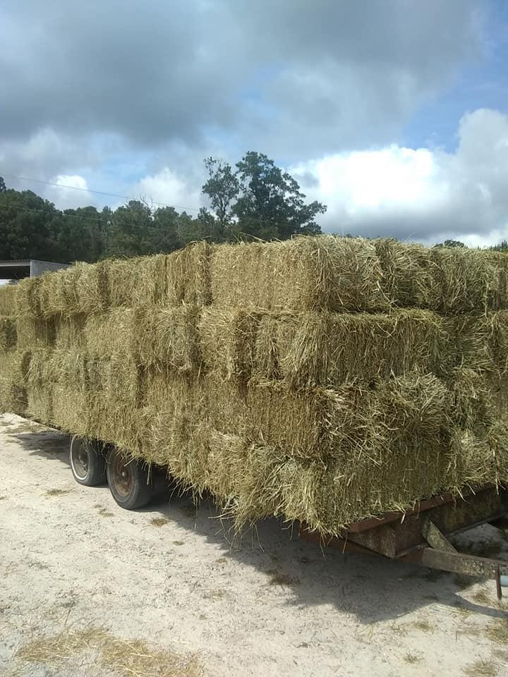 Murphy Farm Hay & Feed - Louisburg, NC 27549 - (919)496-4646   ShowMeLocal.com