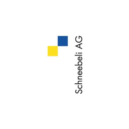Schneebeli AG Felsberg