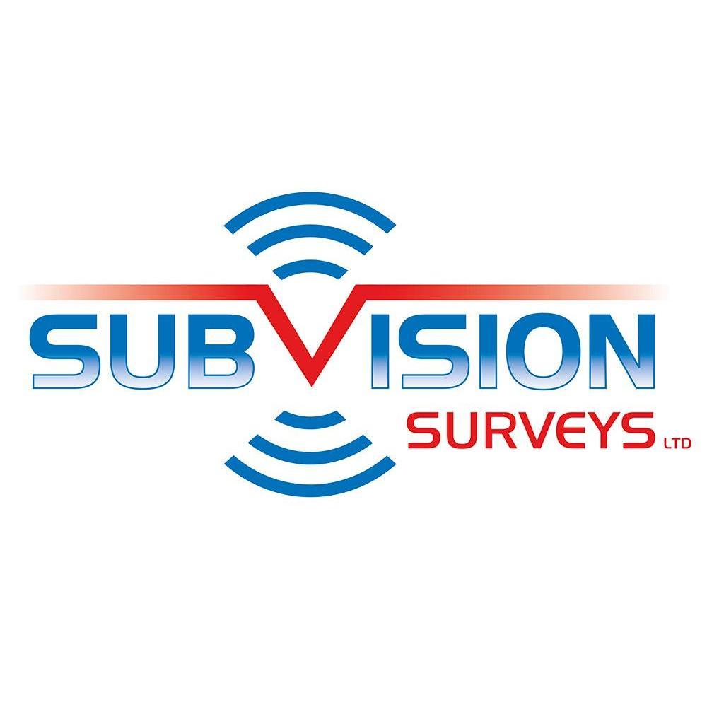 Subvision Surveys