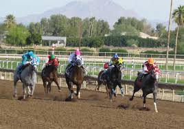 Turf Paradise - Jerry Simms