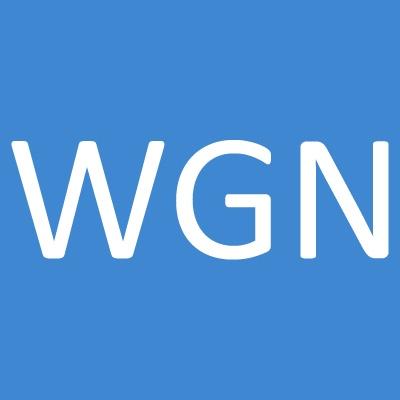 Wgn Flag & Decorating Co