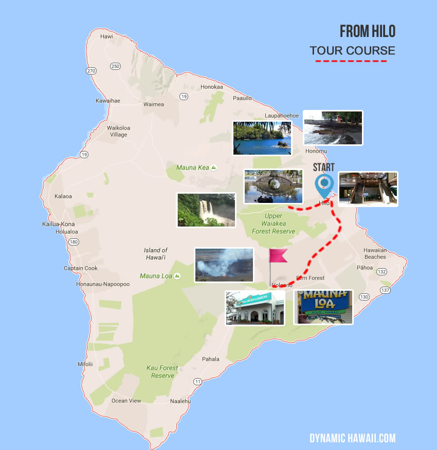 helicopter activity in your area with Dynamic Tour Hawaii on Bravo Helicopter Elite Assassin Strike War also Twelve Feared Killed Pakistani Air Ambulance Helicopter Crash 17942004 besides Lysosome further Dynamic Tour Hawaii as well Red Rock Canyon Rocky Gap Adventure Tour Pm.