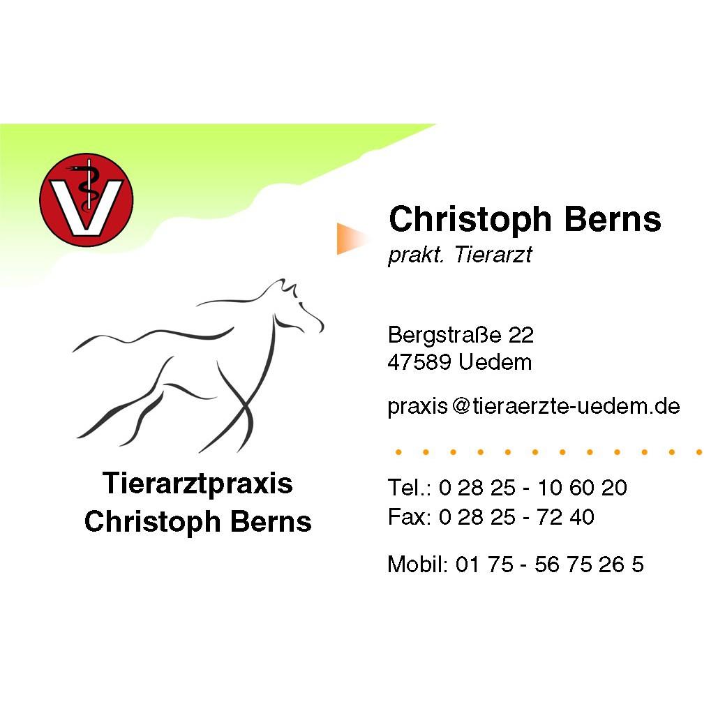 Bild zu Tierarztpraxis Christoph Berns in Uedem