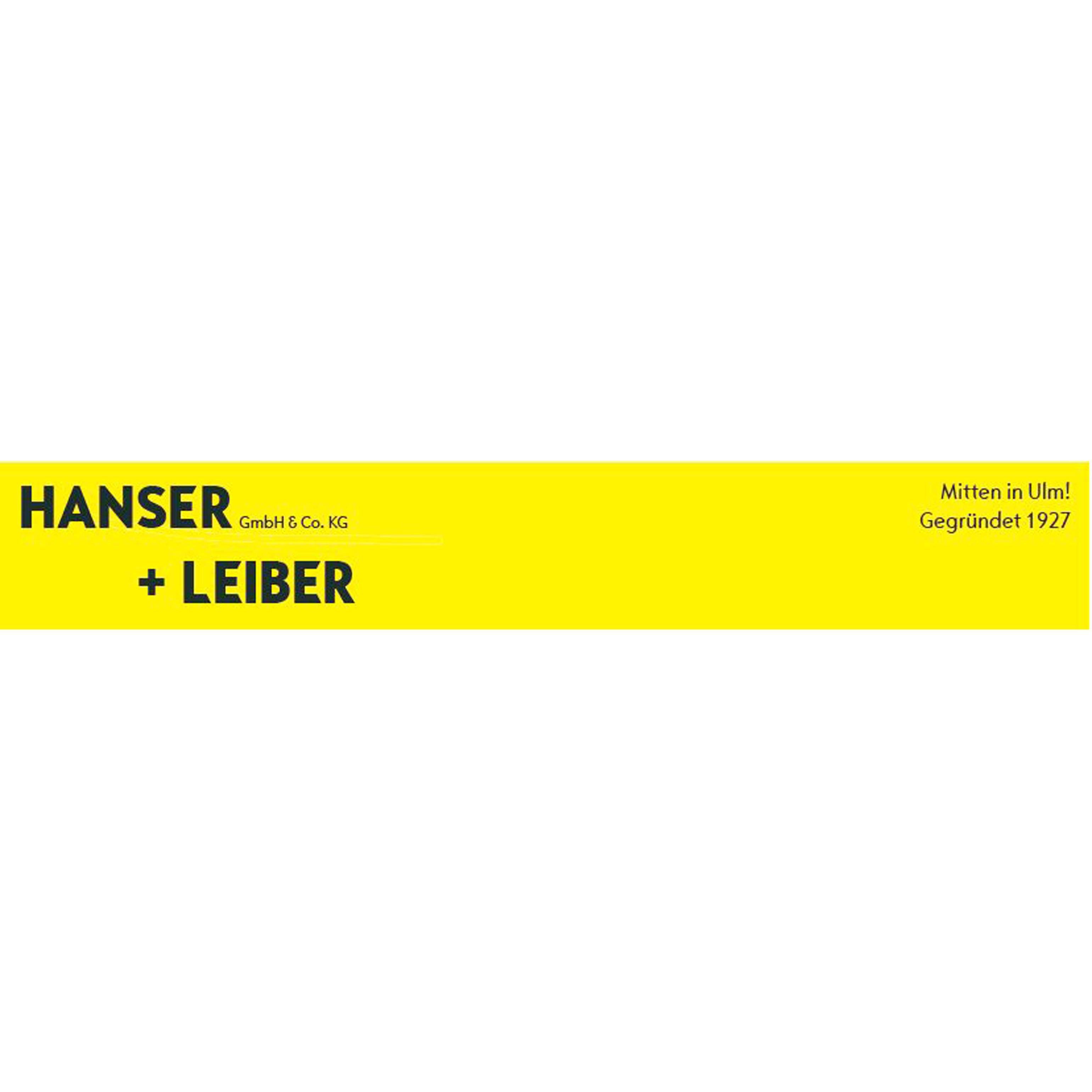 Bild zu Hanser + Leiber GmbH & Co. KG in Ulm an der Donau