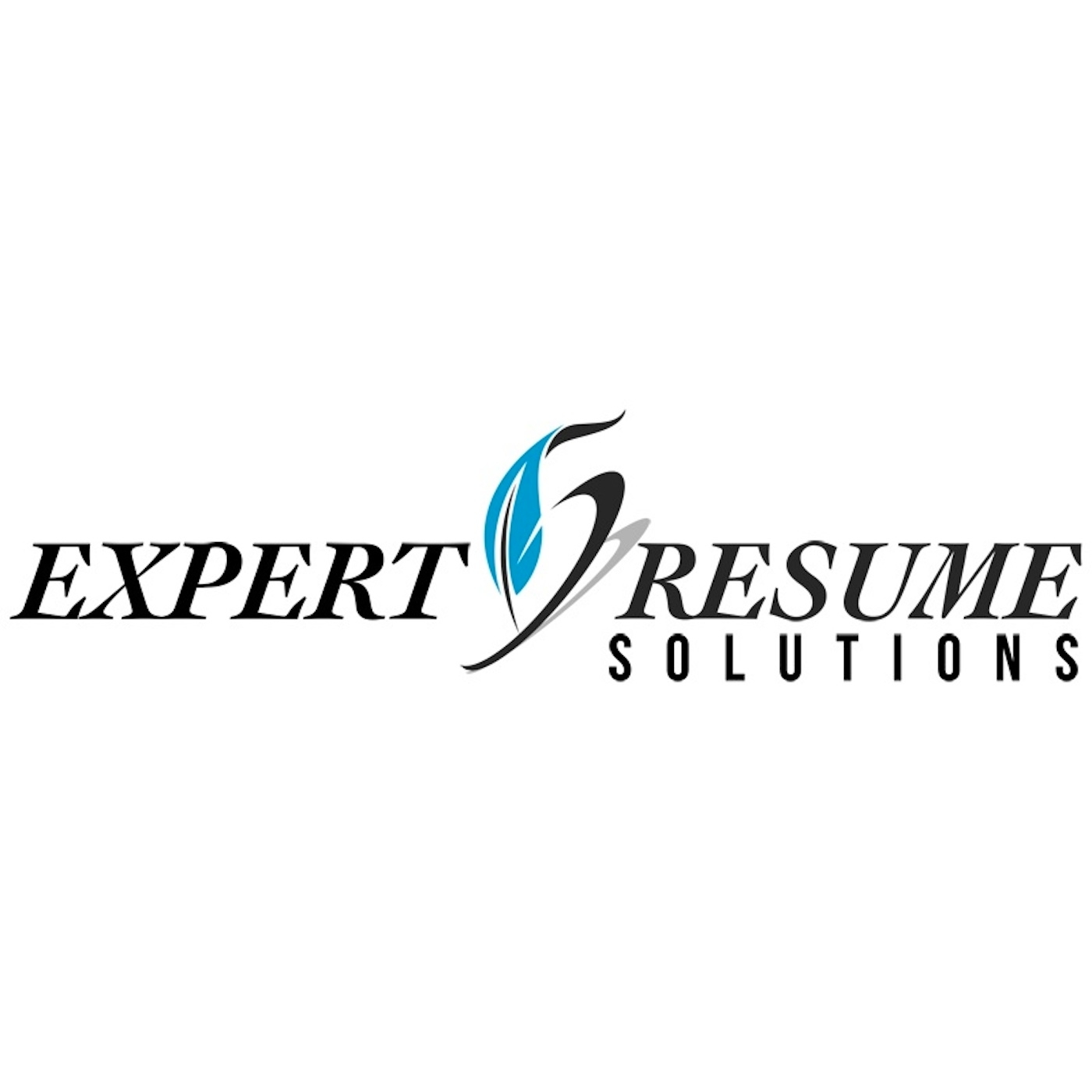Expert Resume Solutions