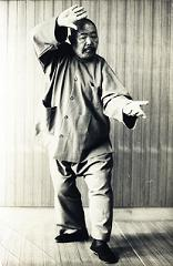 Wu Shen Tao Martial Arts and Holistic Health Center image 0