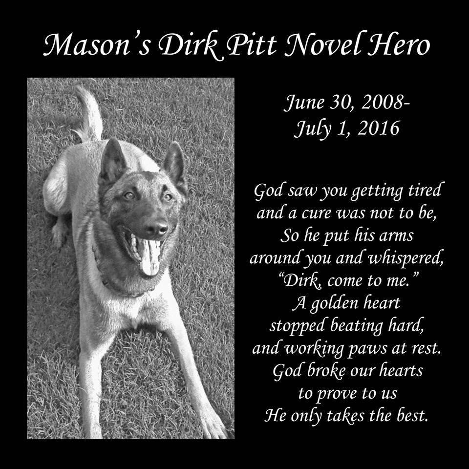 Mason's Mongrel's Dog Training & Kennel's