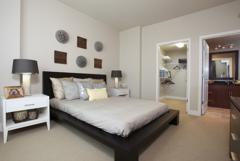 Affordable Luxury Apartments Denver Co