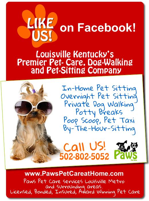 Paws Pet Care Pet Sitting & Dog Walking - ad image