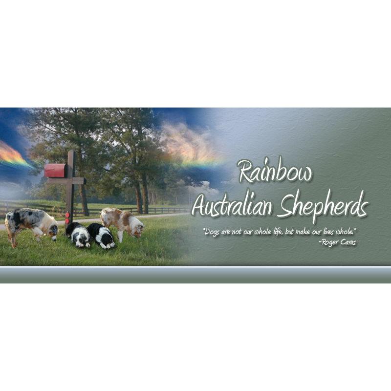 Rainbow Australian Shepherds