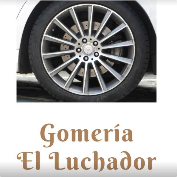 GOMERIA EL LUCHADOR