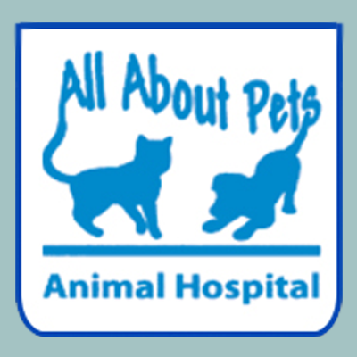 All About Pets Animal Hospital