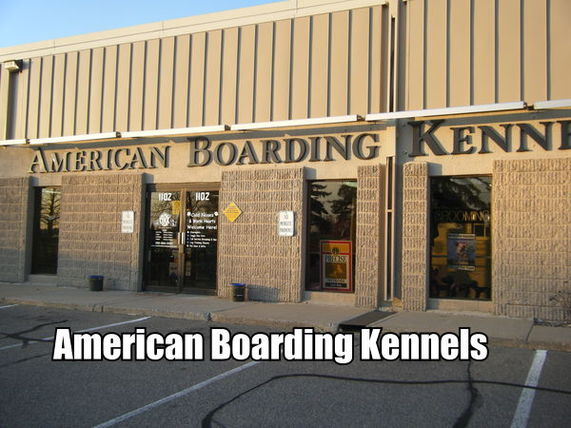 American Boarding Kennel - Burnsville, MN