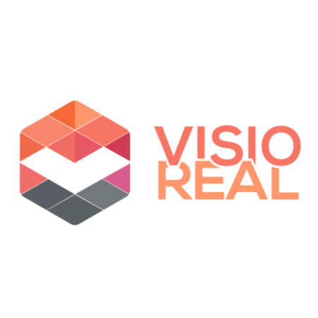 Visio Real Consult GmbH & Co. KG