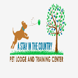 A Stay In The Country Pet Lodge and Training Center - Charles City, VA - Pet Grooming