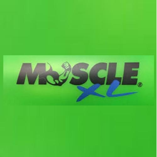 Bild zu Muscle XL in Berlin