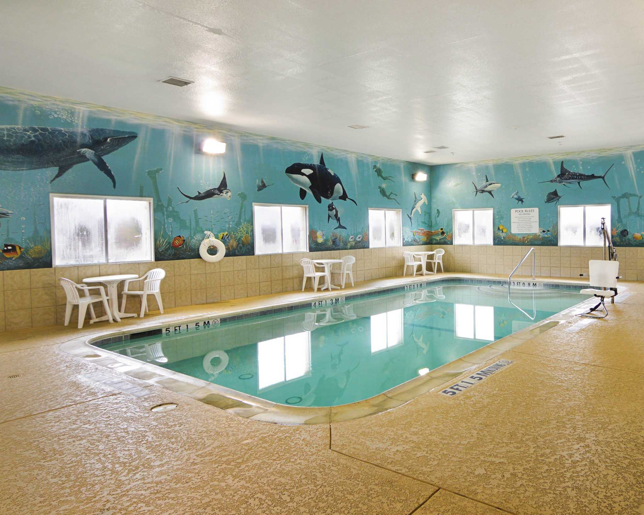 Comfort Suites Coupons Near Me In Grand Prairie 8coupons