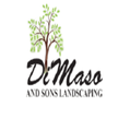 DiMaso & Sons Landscaping