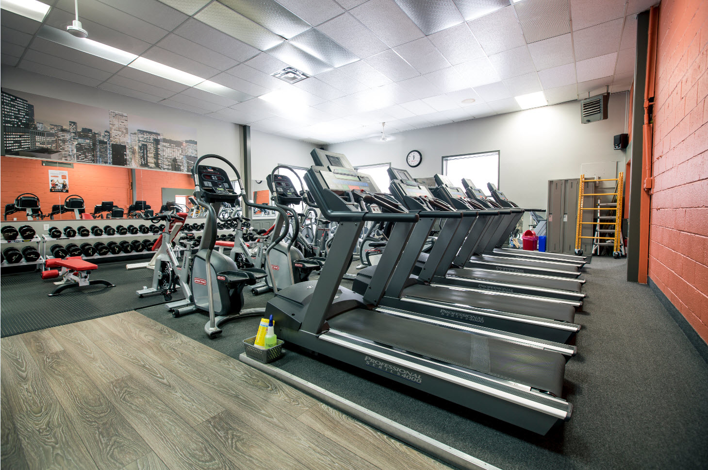 scoots fitness center essay Need a little help staying at the top of your game this awesome photo essay features messages, mantras, and manifestos to keep you motivated.