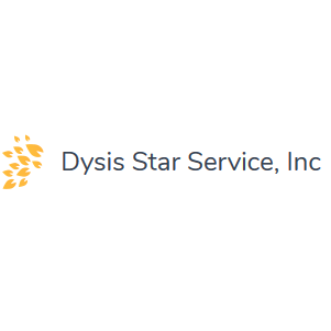Dysis Star Service Inc - The Woodlands, TX - New Books