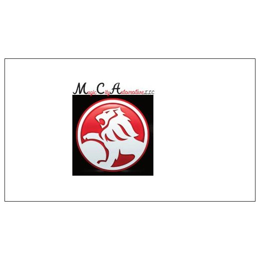 Magic City Automotive L.L.C.