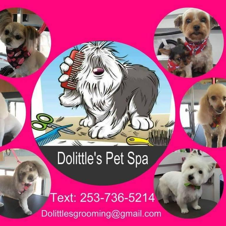 Dolittle's Pet Spa - Goodyear, AZ 85338 - (623)925-9300 | ShowMeLocal.com