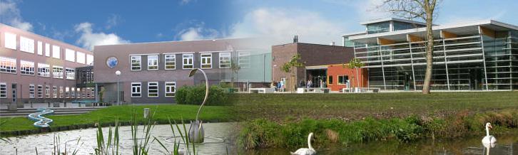 Ceder Stichting