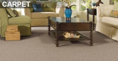Carpet Cleaning Dunwoody Images Bathroom Ideas Travertine