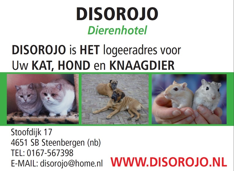 Dierenhotel Disorojo