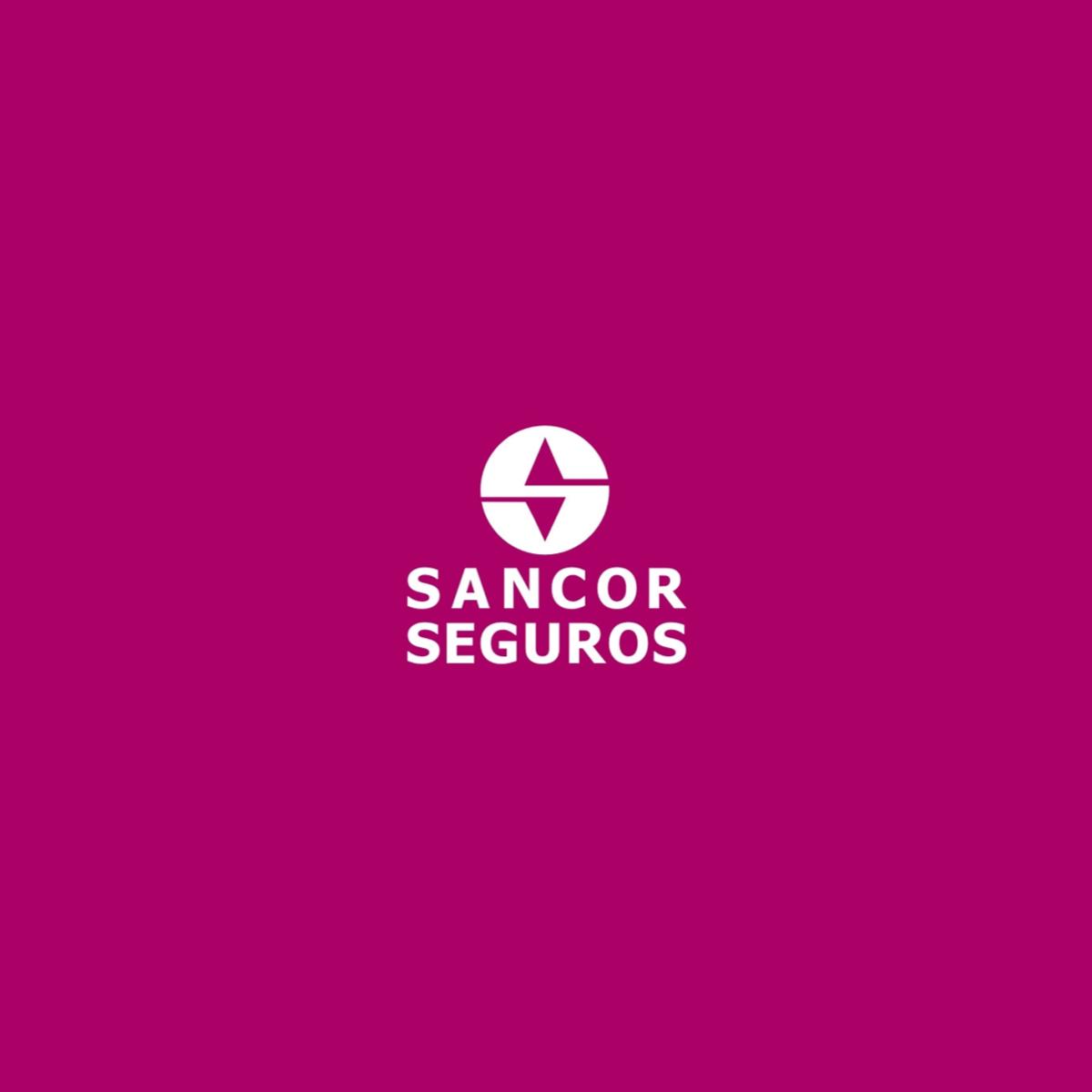 VS PRODUCTOR ASESOR DE SEGUROS